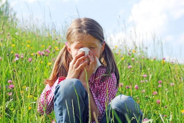 ZirbenLufter-Luftbefeuchter-Luftreiniger-Pollenallergie-Pollen-Pollenallergiker-Zirbenlufter-Lufreiniger-zirbenluefter